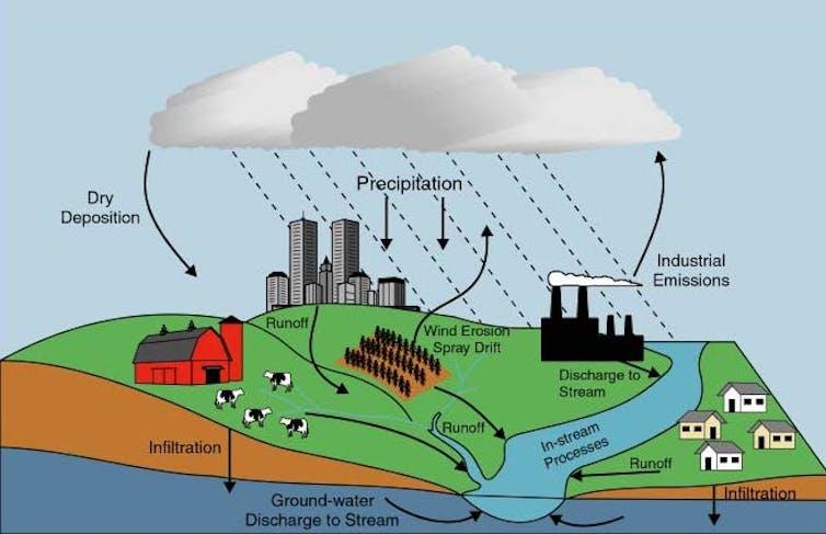 file 20180809 30467 1ch5py7.jpg?ixlib=rb 1.1 In: What is causing Florida's algae crisis? | Our Santa Fe River, Inc. (OSFR) | Protecting the Santa Fe River in North Florida