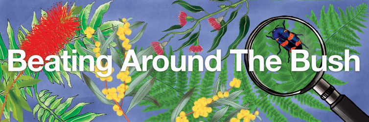 learn all about Australia's native trees and plants