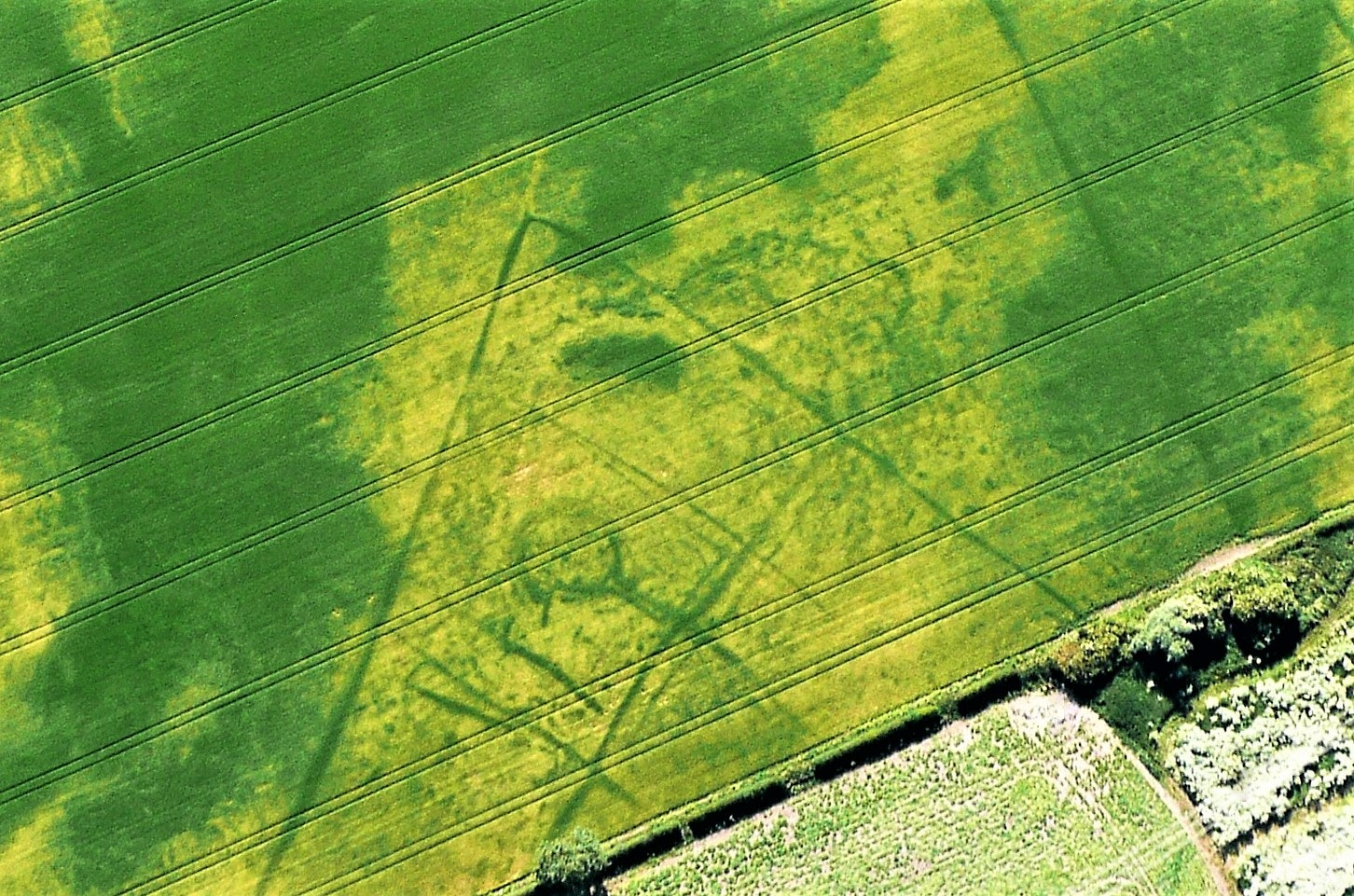 Seen from the air, the dry summer reveals an ancient harvest of archaeological finds
