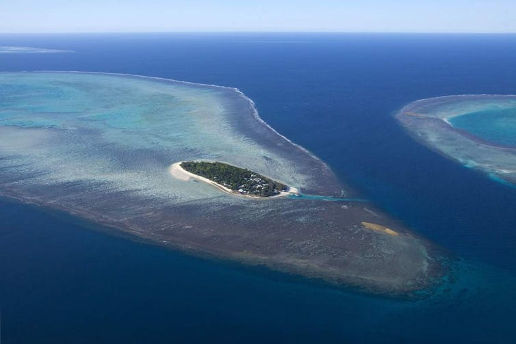 Politicised science on the Great Barrier Reef? It's been that way for more than a century