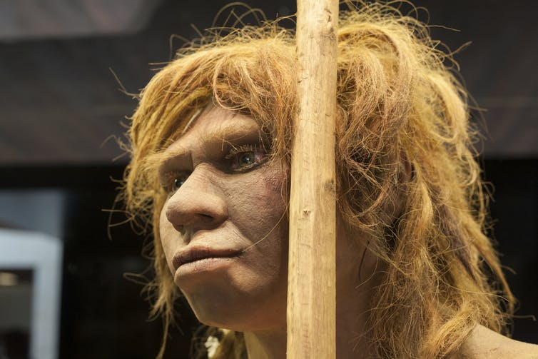 Ancient teenager the first known person with parents of two different species