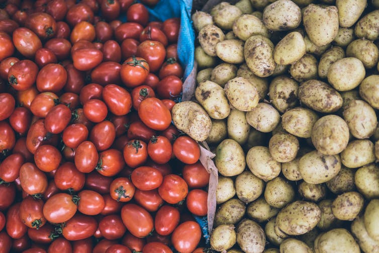 what are nightshade vegetables and are they bad for you?