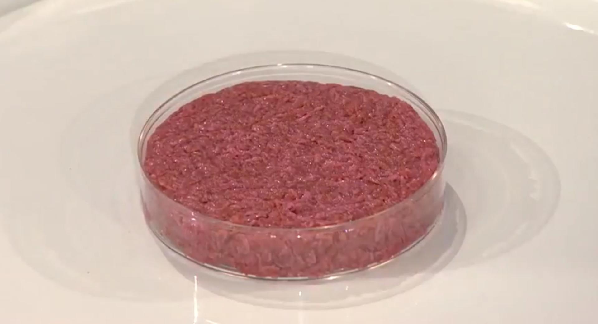First cultured hamburger raw