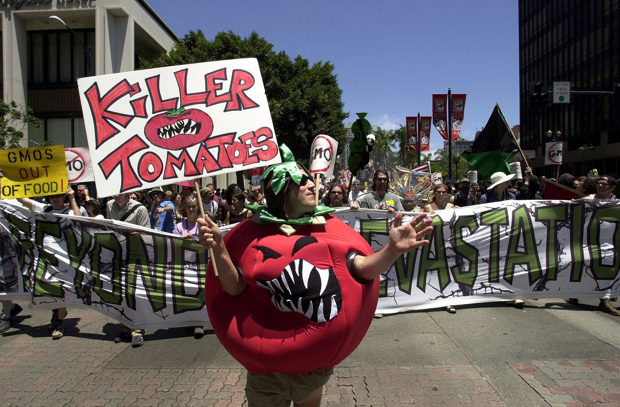 For many, perception of genetically modified foods has changed little from those of this protester dressed as a genetically altered 'Killer Tomato' marching through downtown San Diego, June 24, 2001. Joe Cavaretta/AP Photo