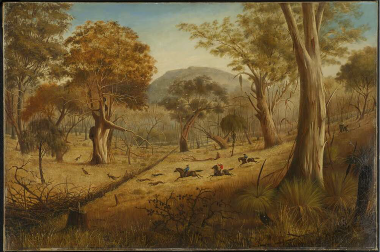 the art of the colonial kangaroo hunt