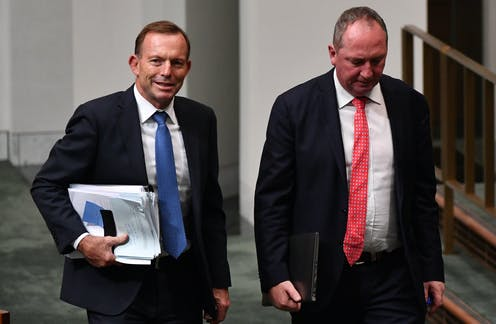 Could Section 44 exclude Tony Abbott and Barnaby Joyce from parliament?