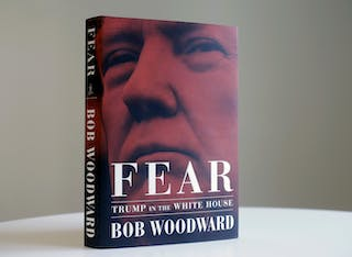Thousands of mental health professionals agree with Woodward and the