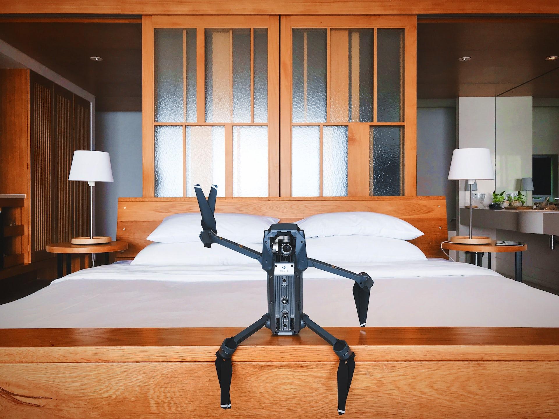 Les robots vont-ils devenir nos nouveaux doudous ?