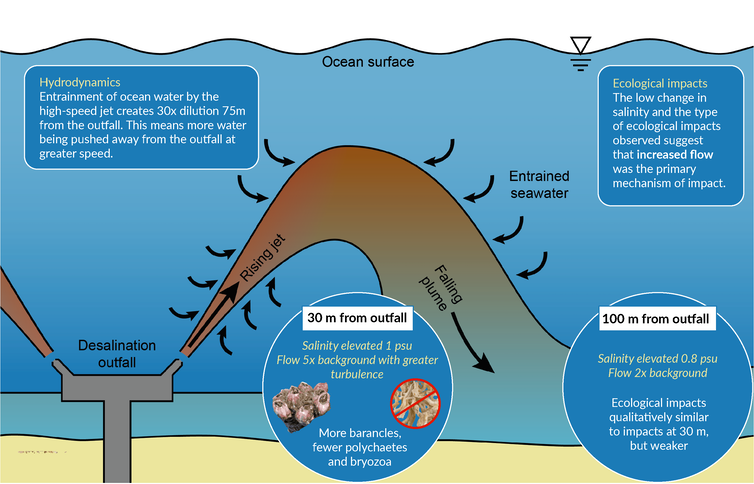 Desal plants might do less damage to marine environments than we thought