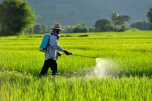 Pesticides and suicide prevention – why research needs to be put into practice