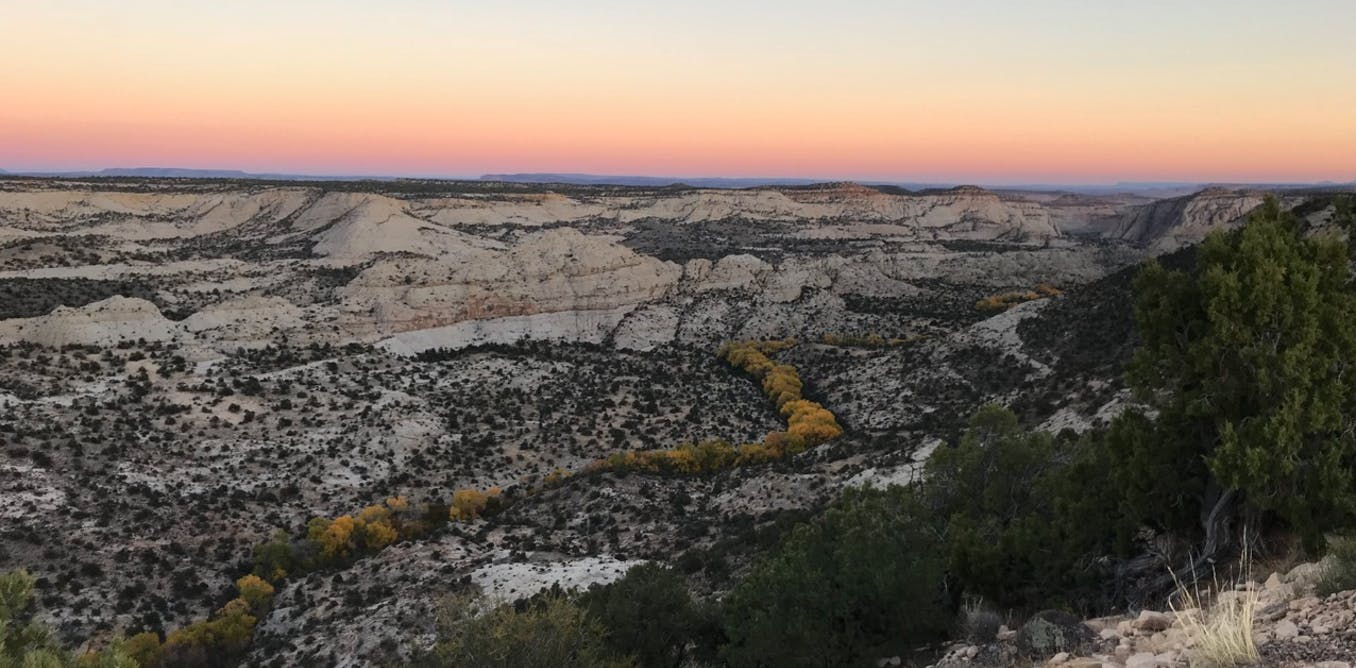 Shrinking the Grand Staircase-Escalante National Monument is a disaster for paleontology