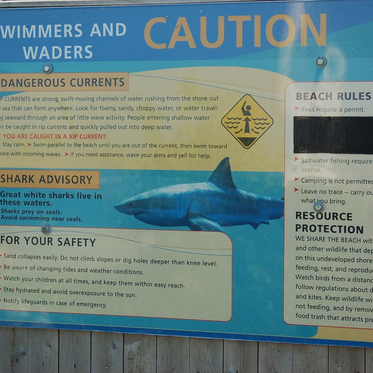 After a fatal shark attack on Cape Cod, will the reaction be