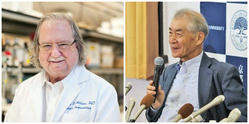 2018 Nobel Prize In Physiology Or Medicine A Turning Point The War On Cancer