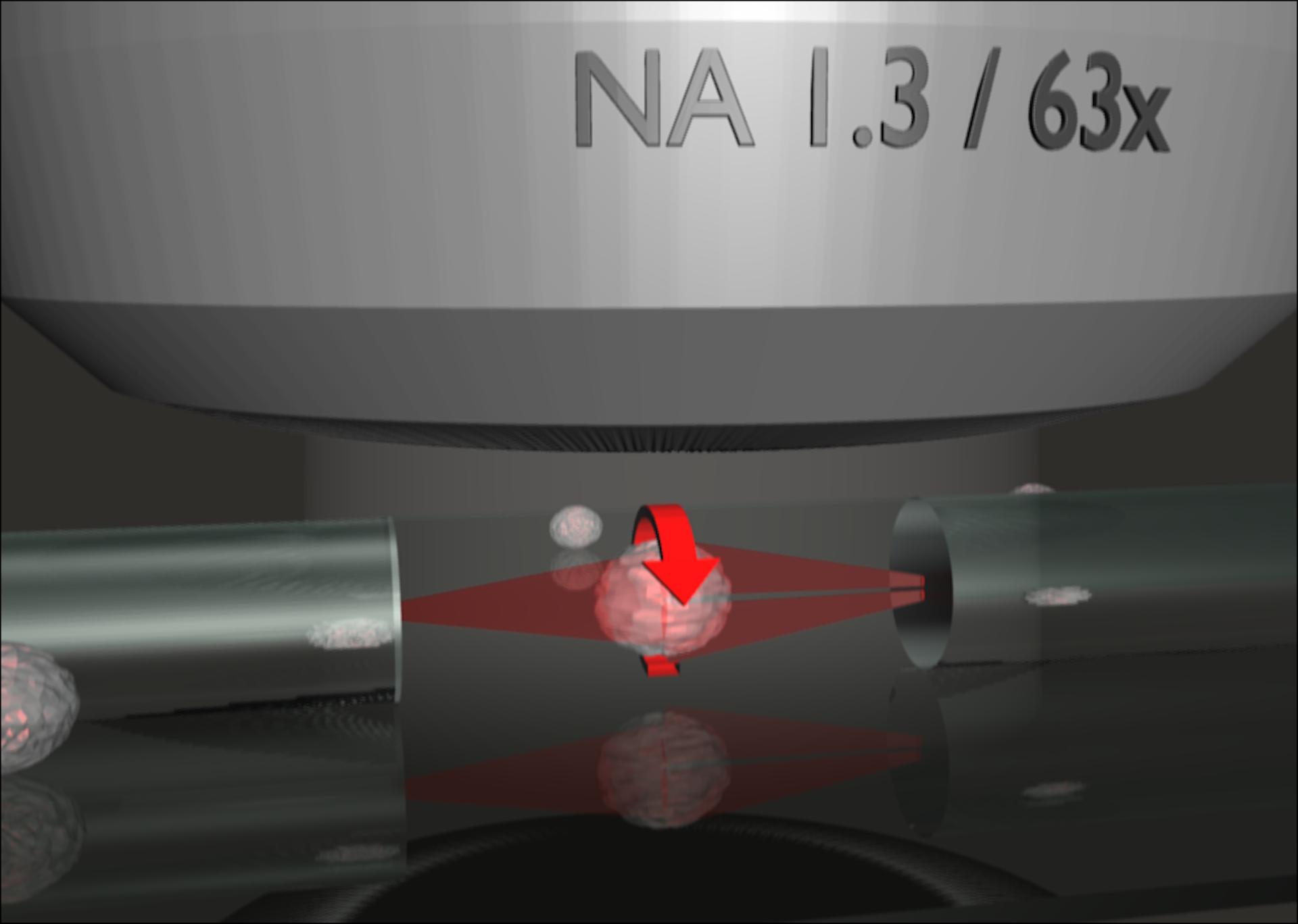 optical cell rotator