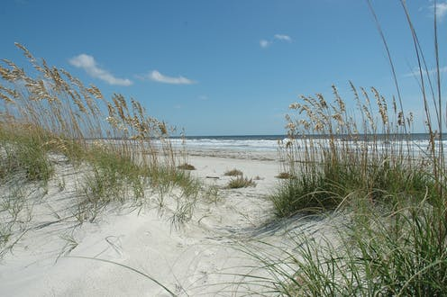 Barrier islands are natural coast guards that absorb impacts