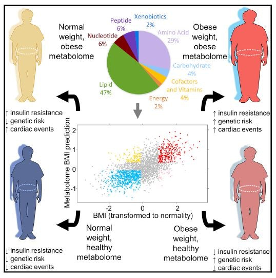 There are many types of obesity – which one matters to your health