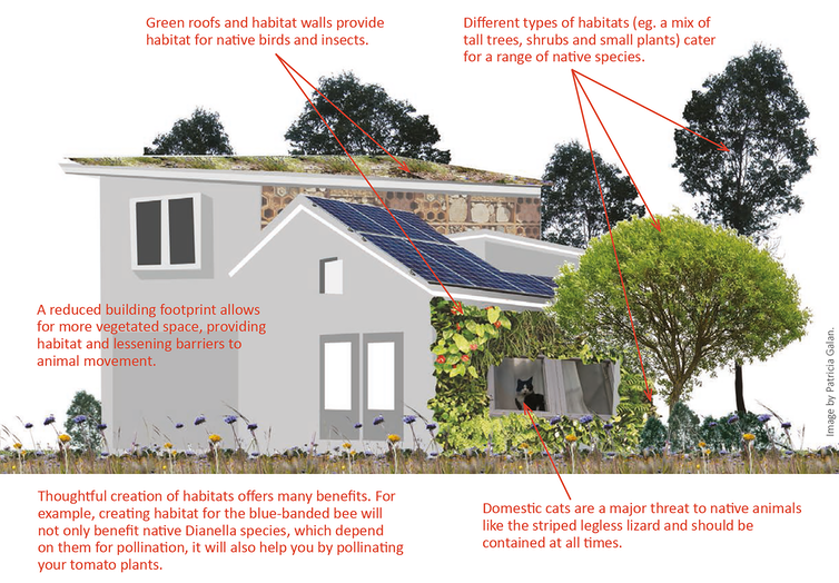 Here's how to design cities where people and nature can both flourish