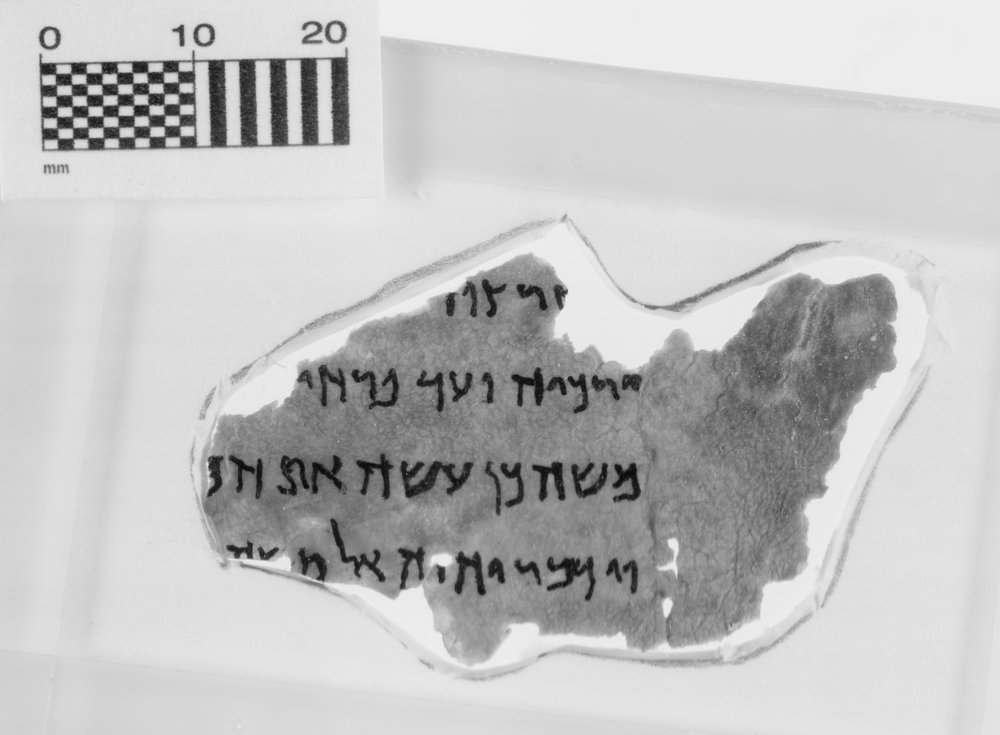 Fake scrolls at the Museum of the Bible