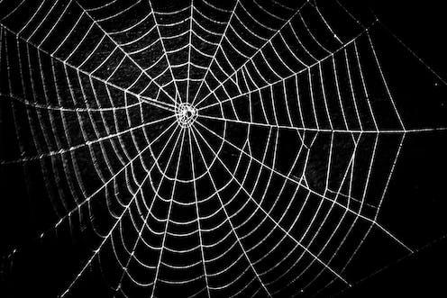 Illuminating the 'dark web'