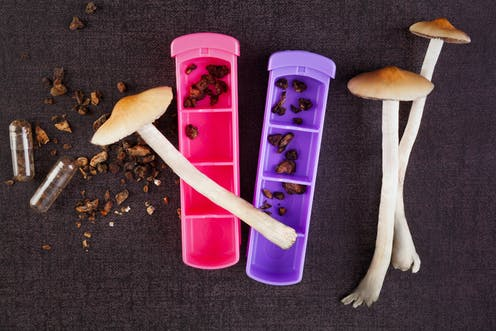 'Microdosers' of LSD and magic mushrooms are wiser and more creative