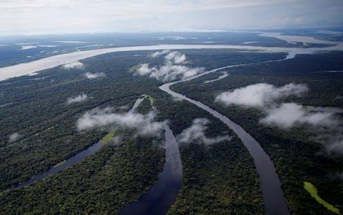La protección estricta del Amazonas fomenta la productividad