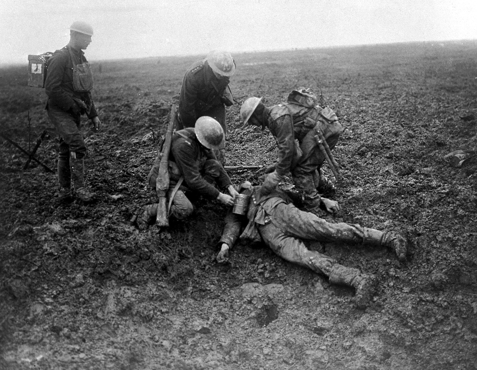 War and peat: how bog moss helped save thousands of lives in World War I