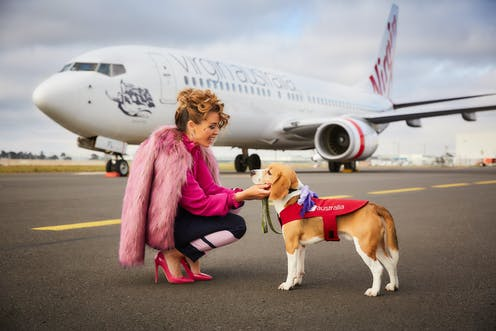 On the offensive: why Virgin Australia gets called a