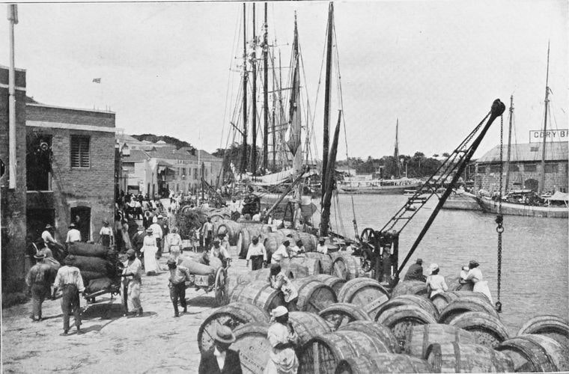 Shipping sugar, Bridgetown, Barbados, 1909.