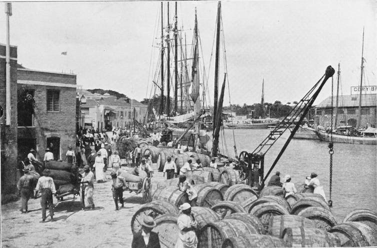 Shipping sugar, Bridgetown, Barbados, 1909.