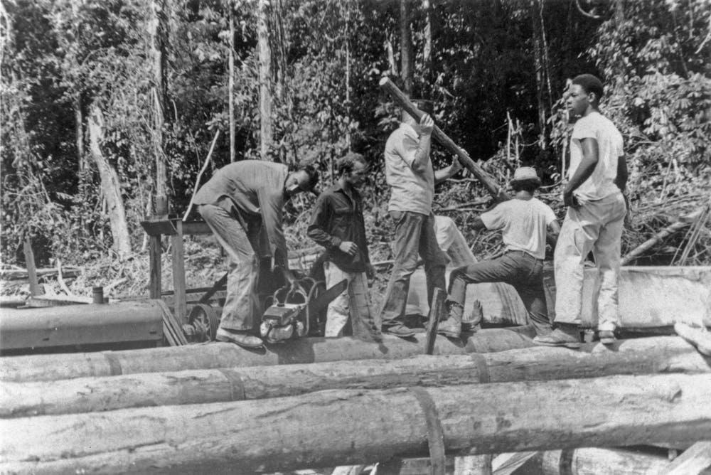 Jonestown residents work at the community sawmill.  Peoples Temple Collection, 1942–2015, (I.D. MS-0183), Special Collections and University Archives, San Diego State University