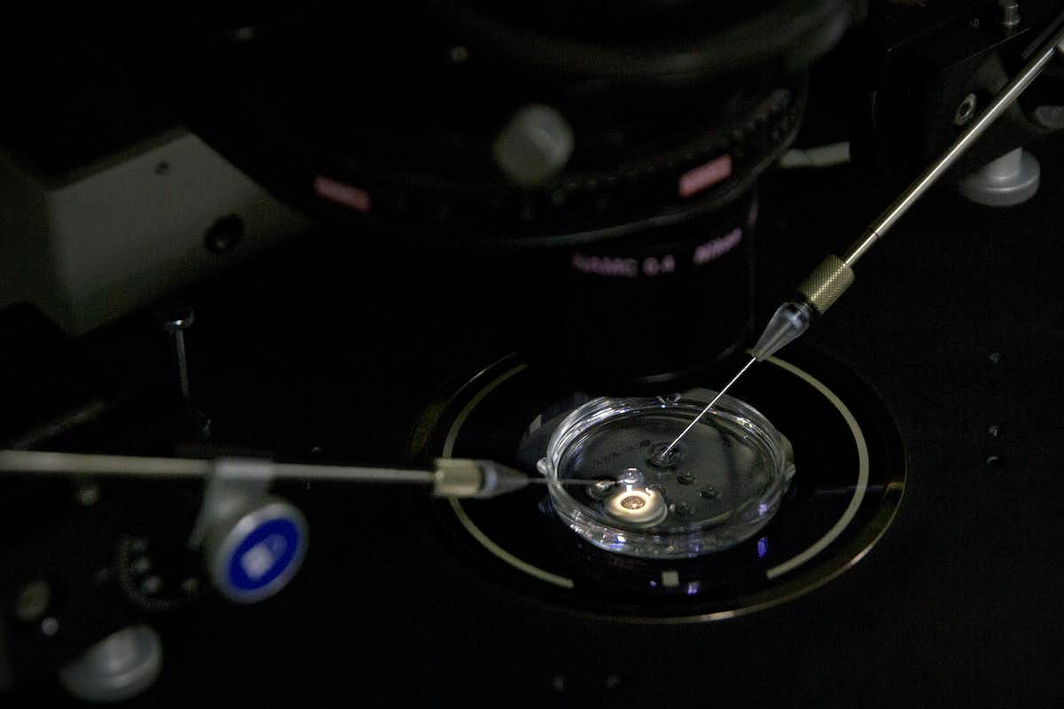 IVF can be prohibitively expensive, even without editing the embryos' genes. AP Photo/Mark Schiefelbein