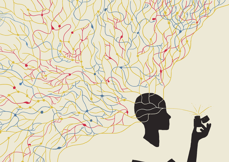 How the brain makes choices: the sinuous path from ...