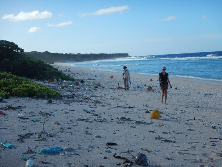 Forget sharks... here's why you are more likely to be injured by litter at the beach