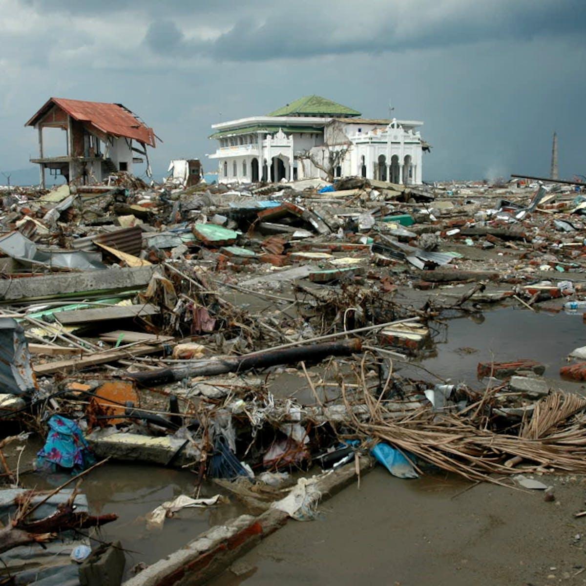 Setelah 14 Tahun Tsunami Aceh Saatnya Kata Smong Masuk Kosakata Bahasa Indonesia
