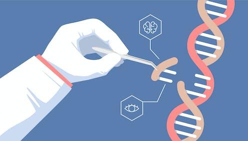 Qué podemos esperar de la edición genética en 2019?