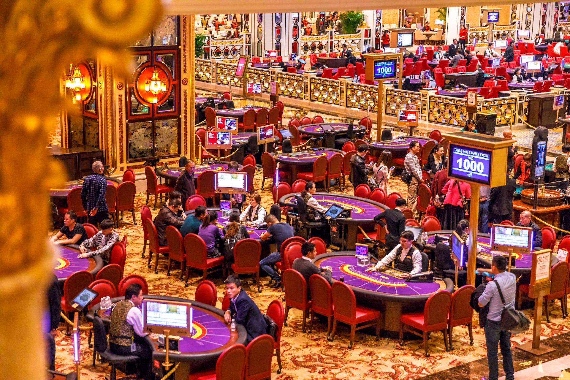 Big casino punters free gambling pictures