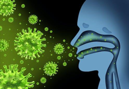 cómo las bacterias entran al cuerpo