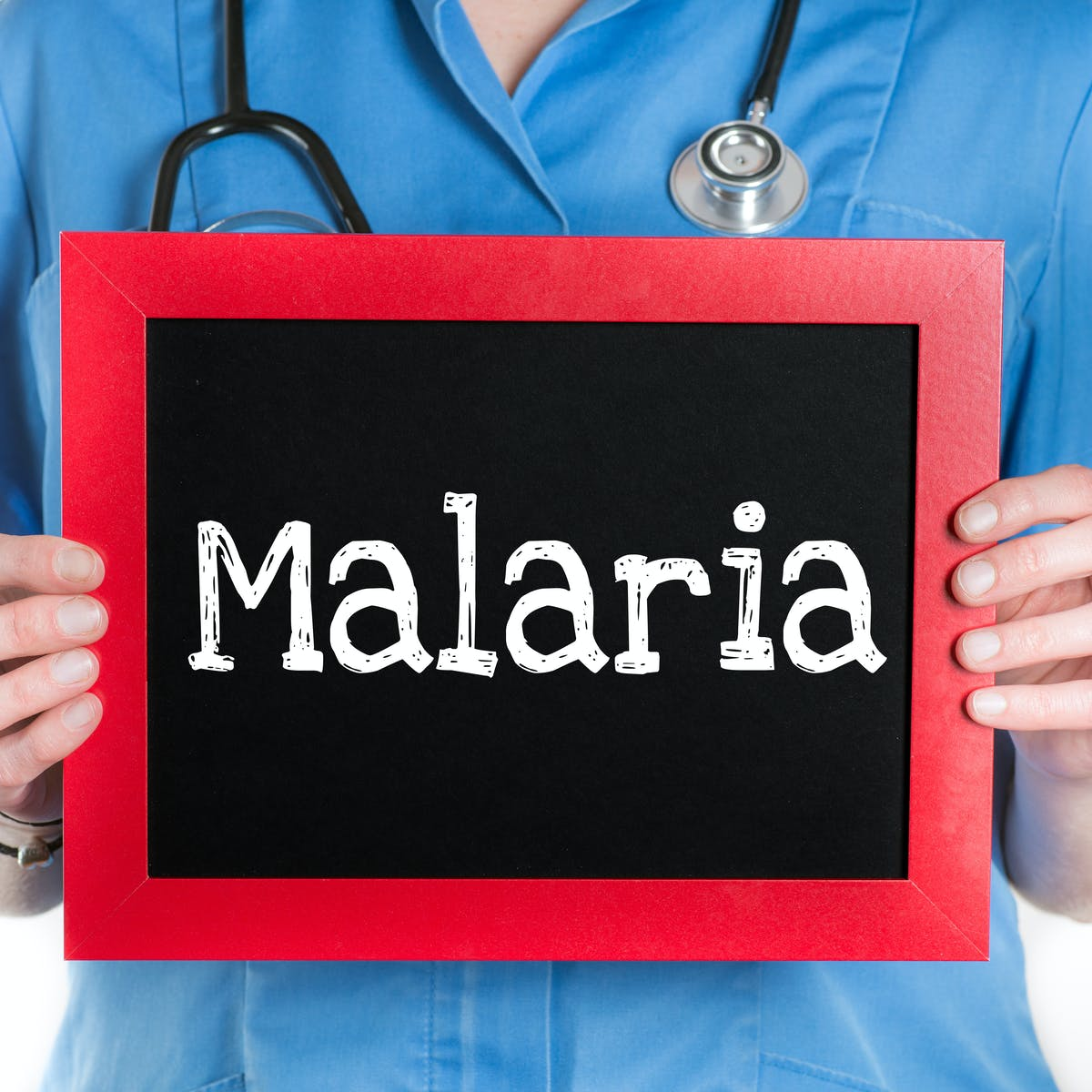 why does malaria reoccur