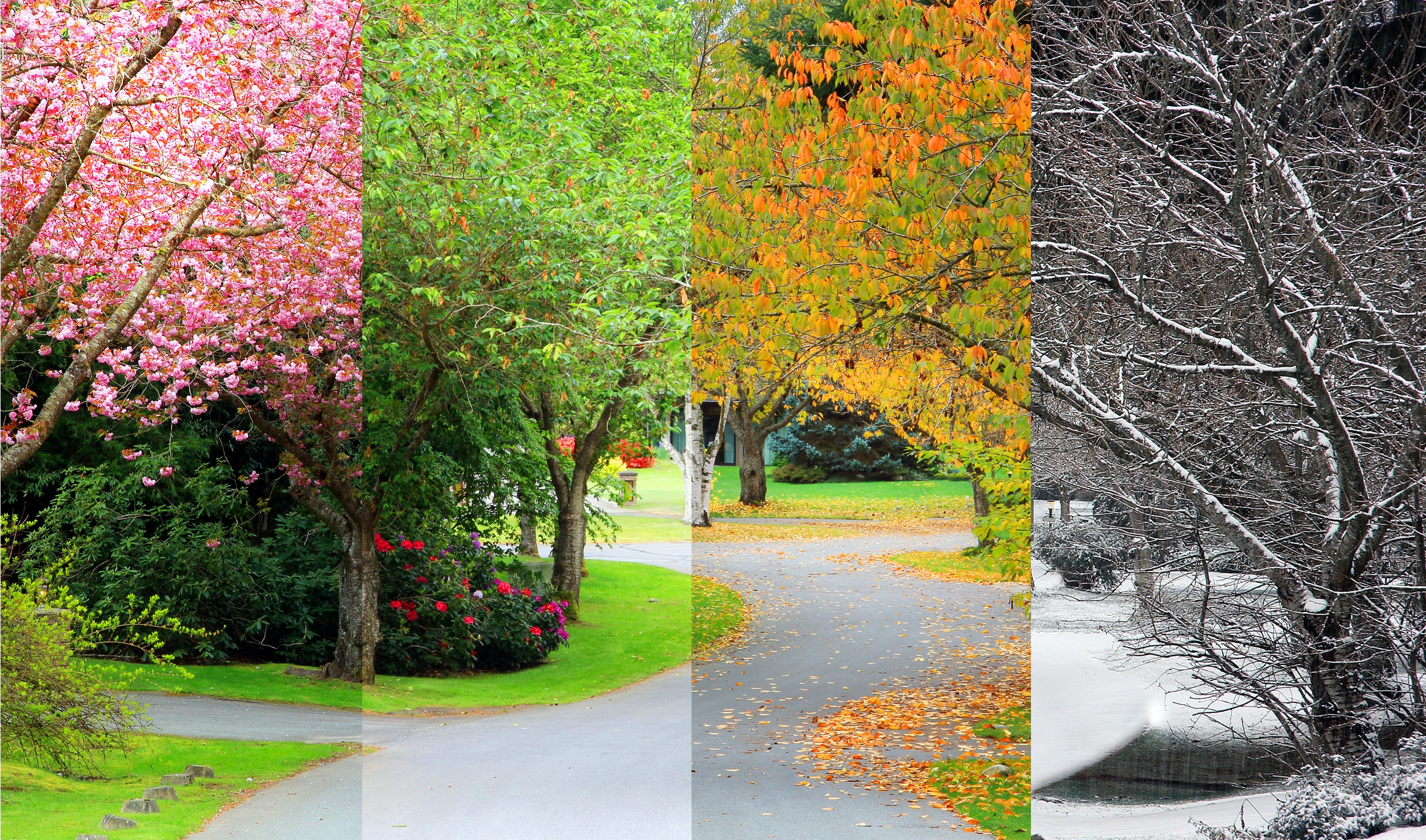 Curious Kids: why are there different seasons at specific times of the year?