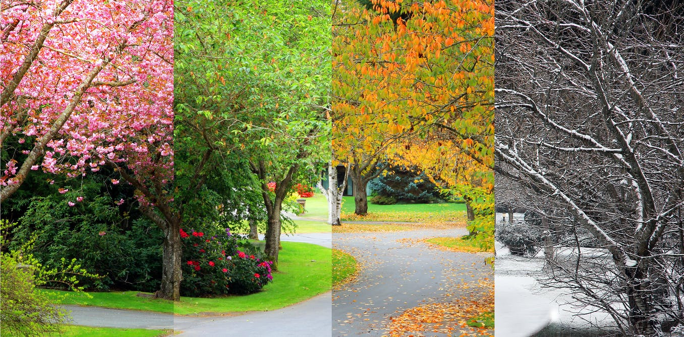 Curious Kids: why are there different seasons at specific