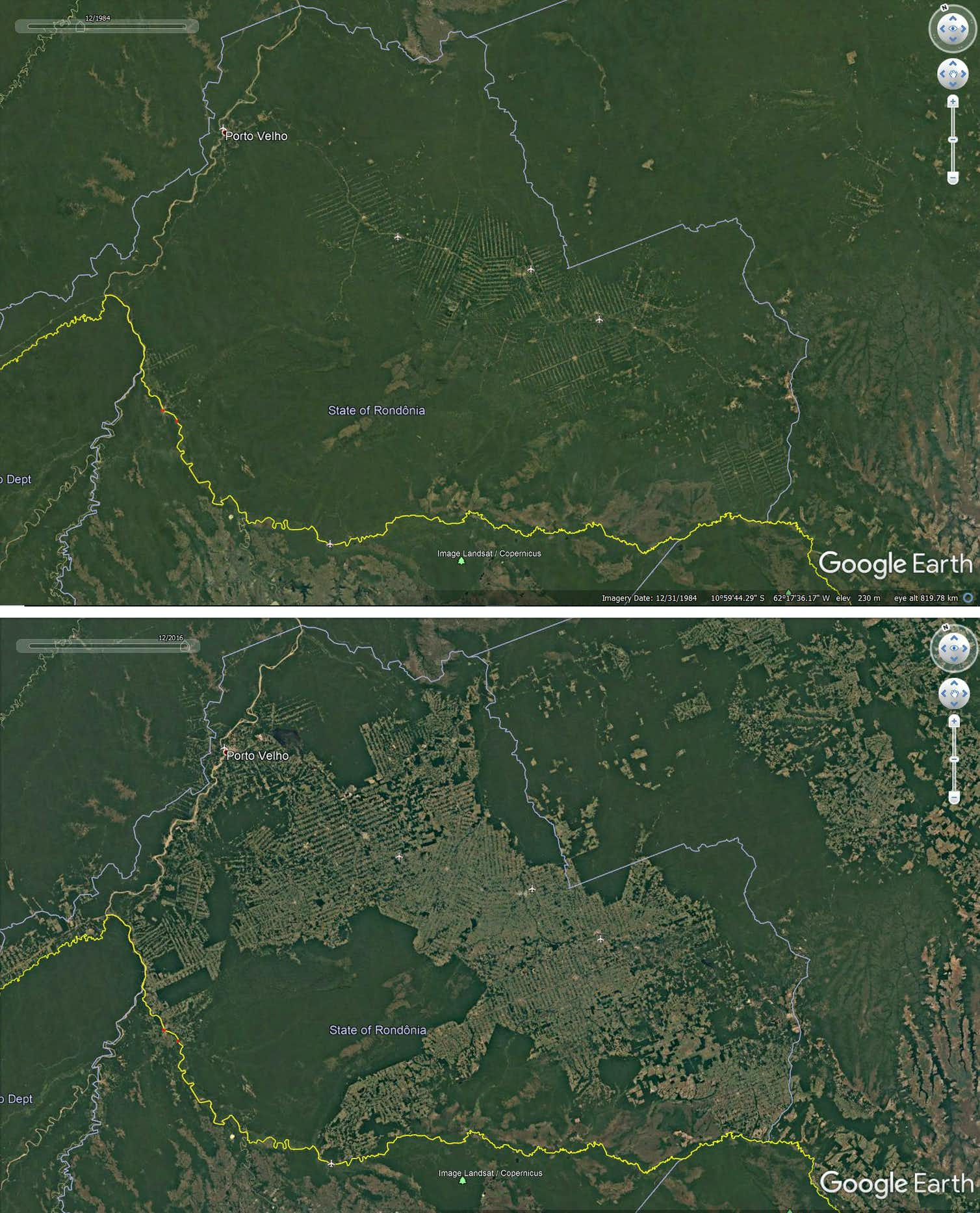 Deforestation around roads in Rondonia, Brazil, 1984-2016. Credit: Google Earth
