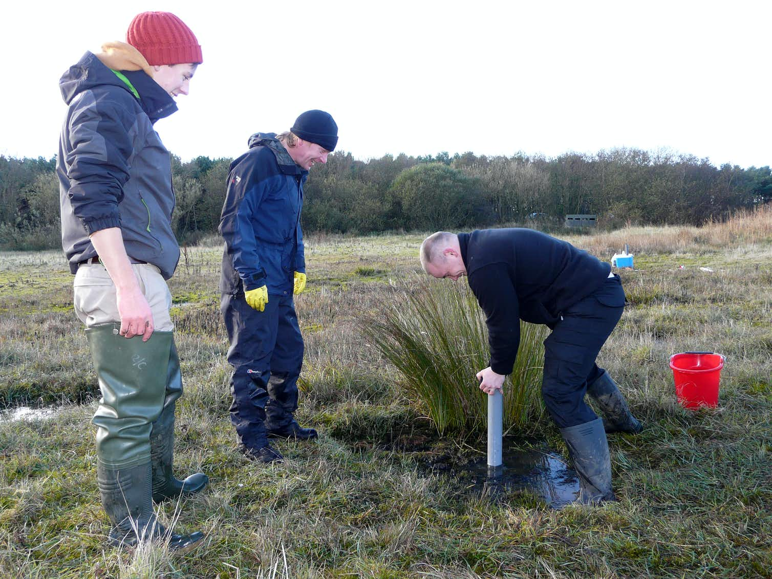 Researchers take carbon cores from ponds at Hauxley Nature Reserve. Photo credit: Mike Jeffries, Author provided
