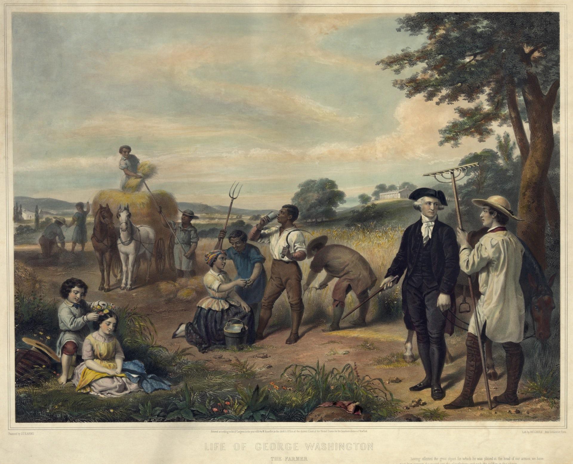 Everett Historical/Shutterstock