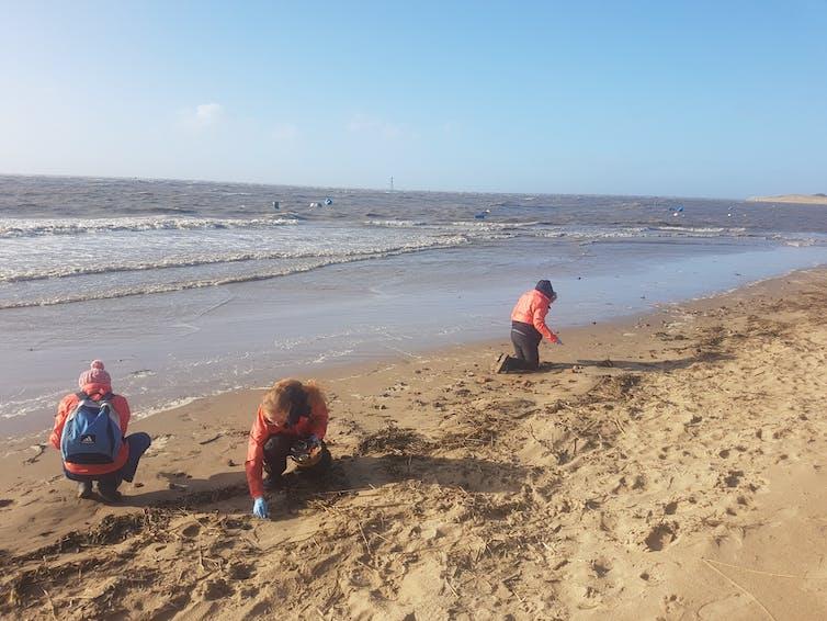 Волонтеры обследуют пляж на предмет гранул. Фото: Клэр Гвиннетт. Предоставлено автором.