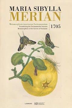 Maria Sibylla Merian, 17th-century entomologist and scientific adventurer