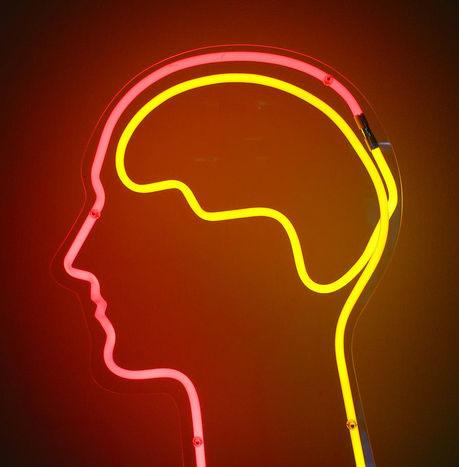 The Self Starving Brain >> How Hunger Makes Your Brain Eat Itself