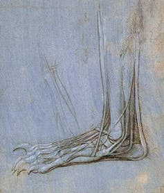 Leonardo da Vinci revisited: how a 15th century artist dissected the human machine