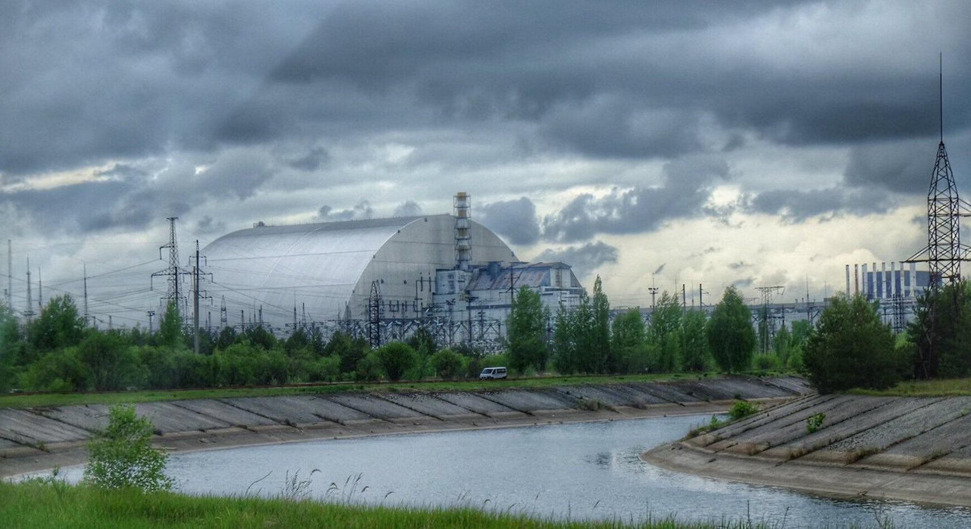 Visitamos la fauna de Chernóbil 33 años después del accidente nuclear
