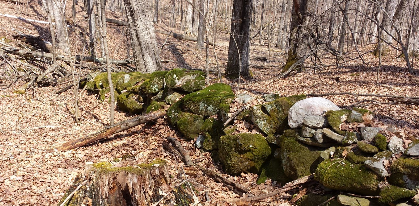 QnA VBage Old stone walls record the changing location of magnetic north