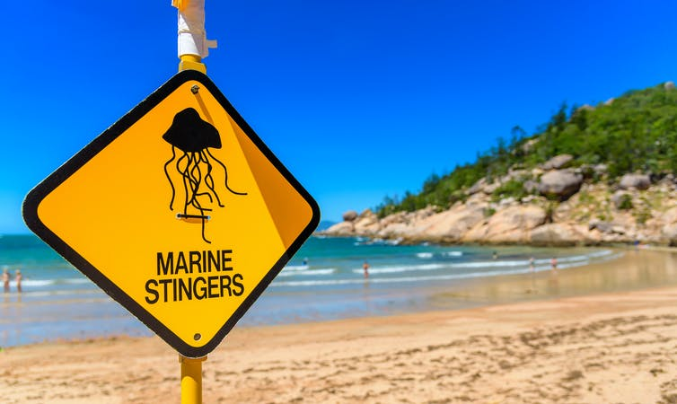 Going to the beach this Easter? Here are four ways we're not being properly protected from jellyfish